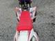 Apollo Motors YTR
