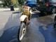 Suzuki TS