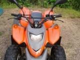 Adly moto Silver Fox