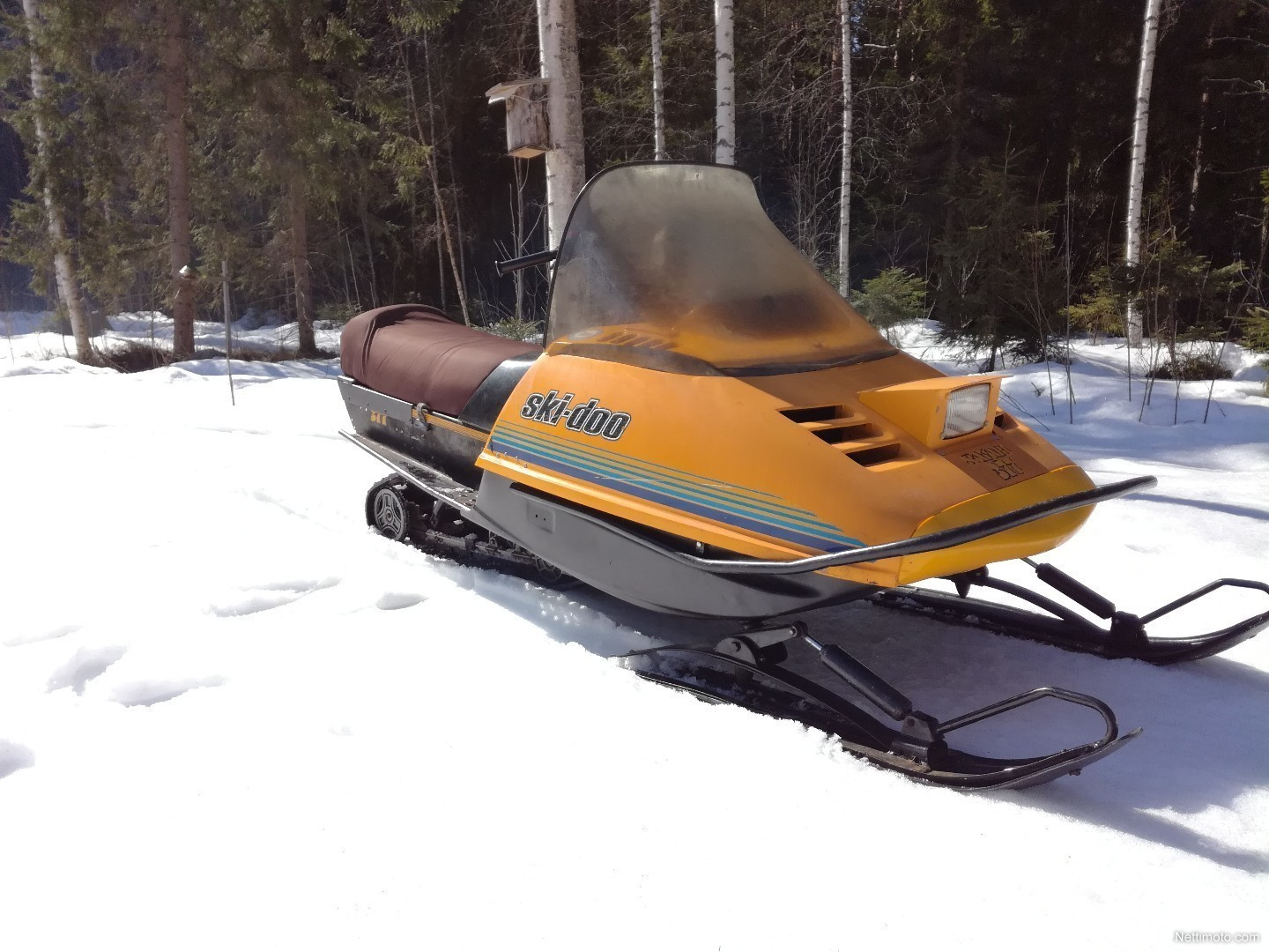 Enlarge image. Ski-Doo Safari